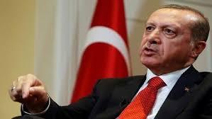 أردوغان يحتمي بالميليشيات لترهيب الأتراك