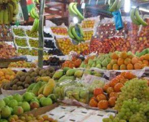 في خطوة باتجاه فتح أبواب التصدير أمامها  هيئة المقاييس السورية ووزارة الزراعة تتفقان على مواصفات جديدة لقائمة من المنتجات الزراعية