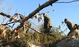 """الجيش يحبط محاولة تسلل لإرهابيي """"النصرة"""" إلى إحدى النقاط العسكرية في القلمون الغربي"""