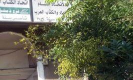 """""""الأمن القومي العربي وآفاق المستقبل"""" في ندوة بدمشق"""