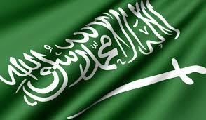 النظام السعودي.. خادم الشرّين!