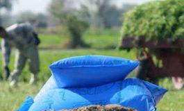 ينذر بانخفاض جدوى مجمل العملية الزراعية..  لهيب أسعار المستلزمات الإنتاجية يربك العملية الزراعية.. والفلاح في حقول العجز المادي