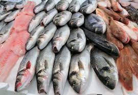 بعد أن خرجت من الخدمة..  مزارع الأسماك في حمص.. إنتاج متواضع ومراكز بحاجة إلى الدعم