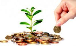 مشاريع استثمارية لذوي الشهداء