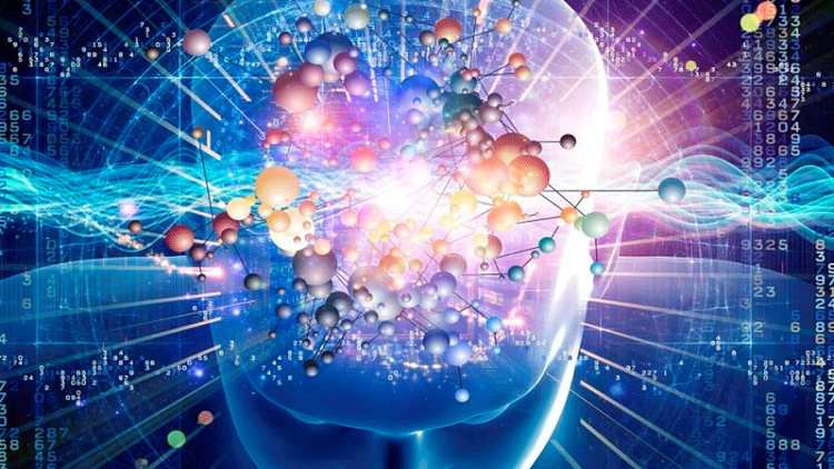 الدماغ يحفظ المعلومات أثناء النوم