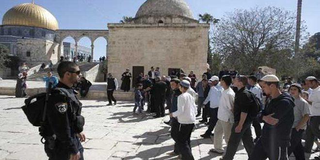 مستوطنون إسرائيليون يقتحمون المسجد الأقصى بحماية قوات الاحتلال