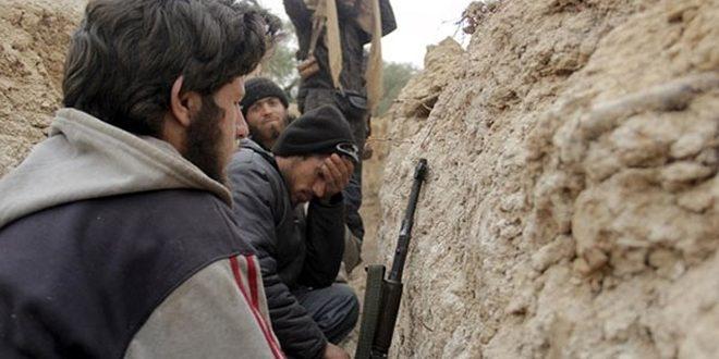 مقتل أغلب الأذربيجانيين الذين قاتلوا إلى جانب الإرهابيين في سورية