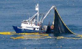 مواءمة قوانين الصيد البحري السوري اللبناني