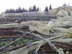 التعويضات عن الأضرار الزراعية بالانتظار والترقّب