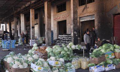 """""""على عينك يا تاجر """"..  سوق الهال في اللاذقية.. متاهة «استغلالية» لمواسم الفلاحين وتلاشٍ دائم للجدوى التسويقية"""