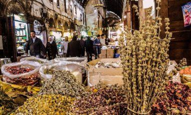 الأعشاب الطبية.. خلطات ووصفات علاجية ومنافسة تجارية في سوق العطارين